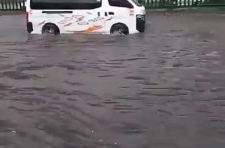 Video: Lluvia genera severos encharcamientos en Coacalco